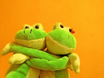 Little Frogs Cute Love Funny & Inspirational Photos